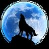 Avatar of wolfgar74