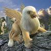 Avatar of goldengrifon