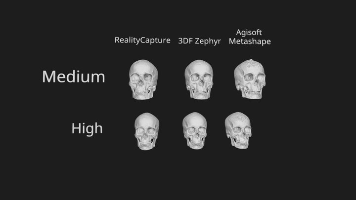 Compare: Metashape / RealityCapture / 3DF Zephyr 3D Model