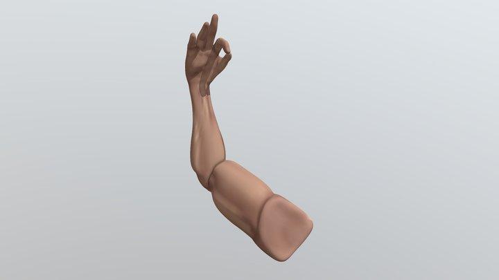 Stylized_Arm 3D Model