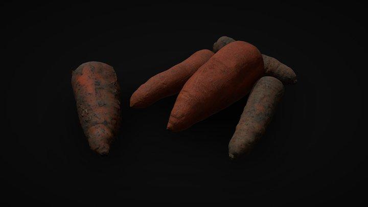 Carrot photogrammetry | Game ready asset 3D Model
