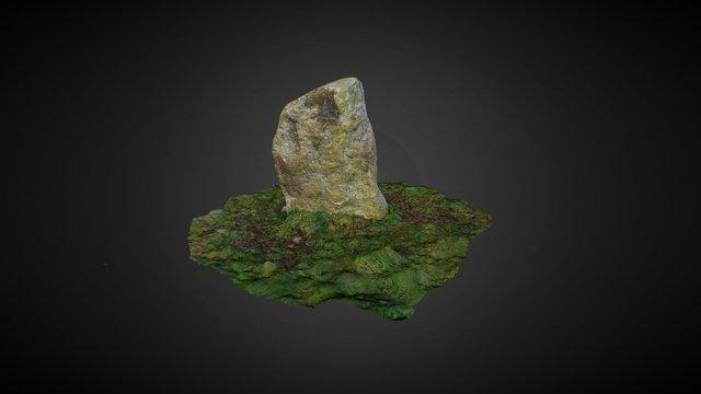 CO050-073003_Meenahony Single Standing Stone 3D Model