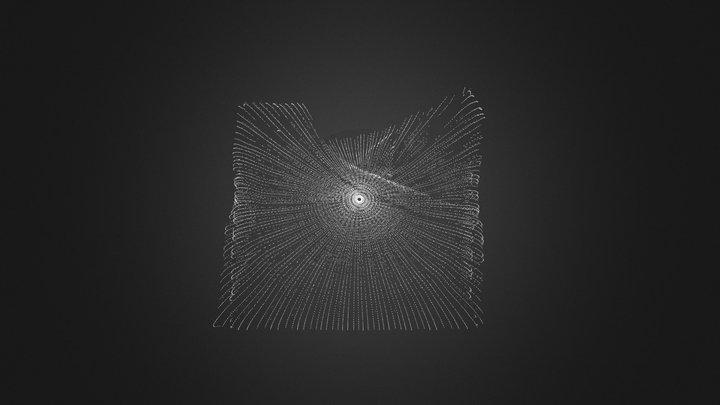 Pulli 3D Model