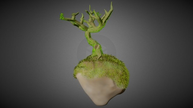 Tree Fantasy 2 3D Model