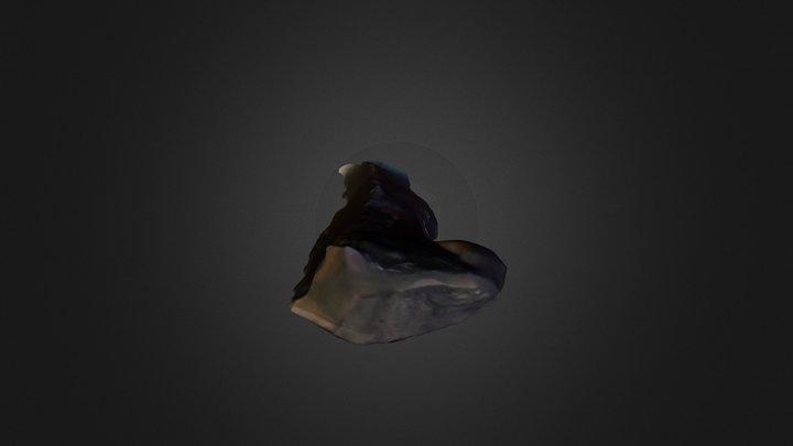 Lasca bipolar 3D Model