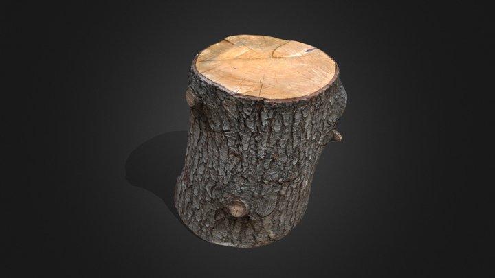 Tala - Proyecto Final 3D Model