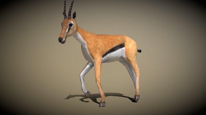 3DRT - Safari animals - Gazelle 3D Model