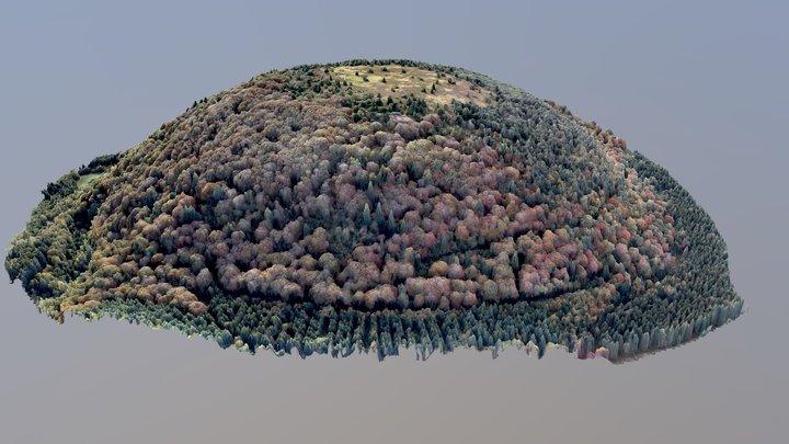 Sarcoui 3D Model