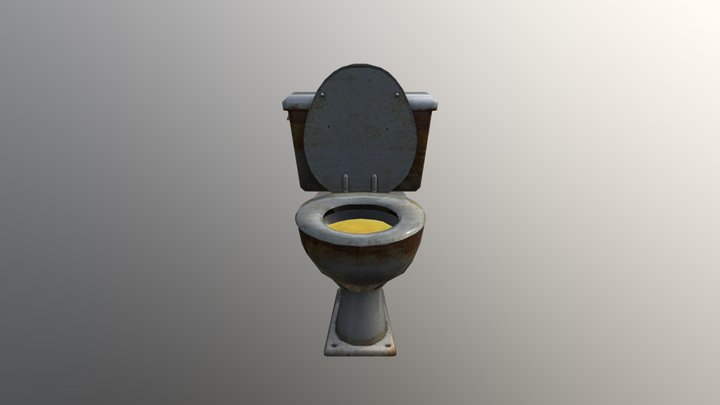 Souce Toilet Dirty 2 3D Model