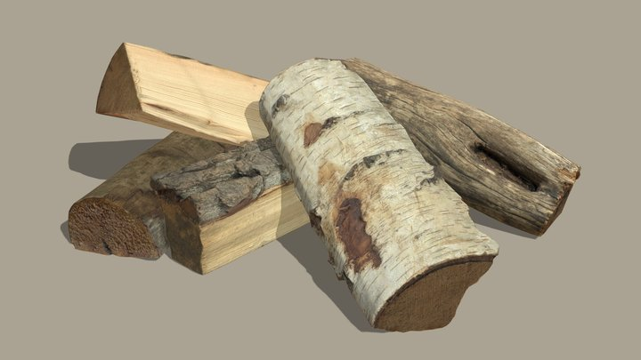Dry Firewood 3D Model