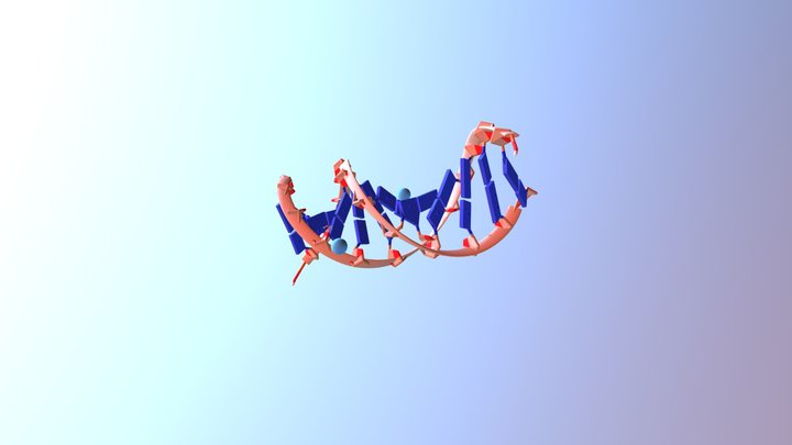 Ideal DNA B sequence structure 3D Model