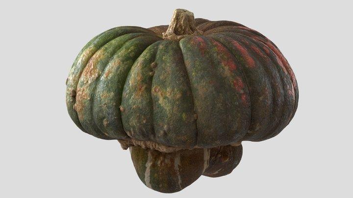 Pumpkin Scan 01   Retopologized 3D Model