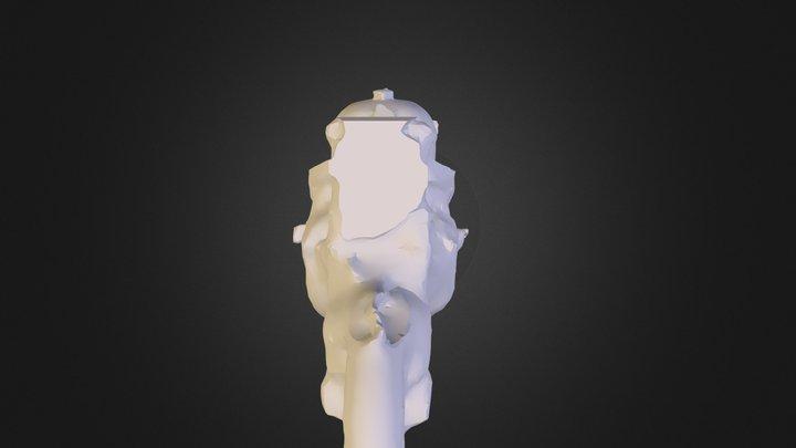 22 3D Model
