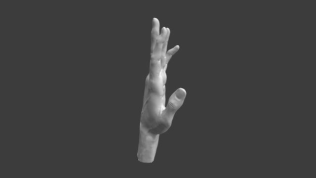 Hand Fingers Semi Extended 3D Model