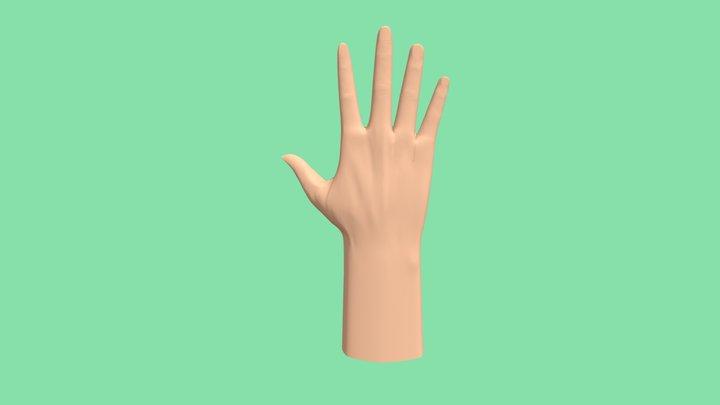 high poly Hand 3D Model