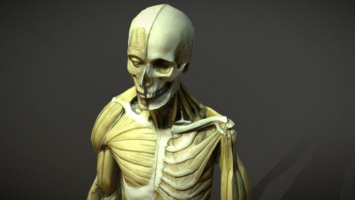 Ekershe_Male 3D Model