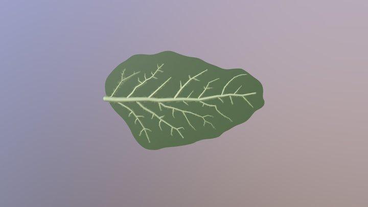 Leaf Green 3D Model