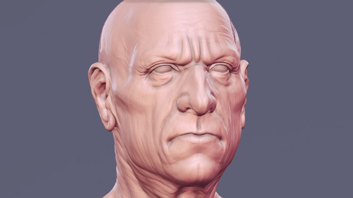 ZSketch 3D Model