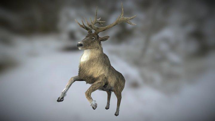 Nordic Deer 3D Model