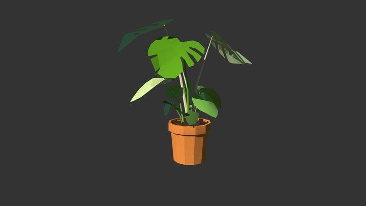 Split Leaf Philodendron 3D Model
