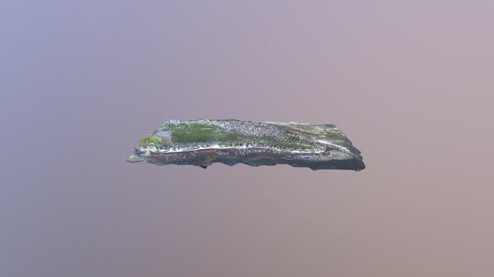 Big Munson Island East End 3D Model