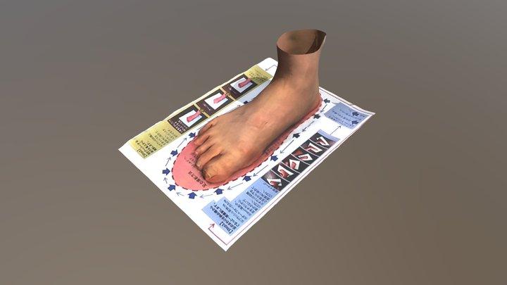 足部3Dデータ / foot 3D data 3D Model
