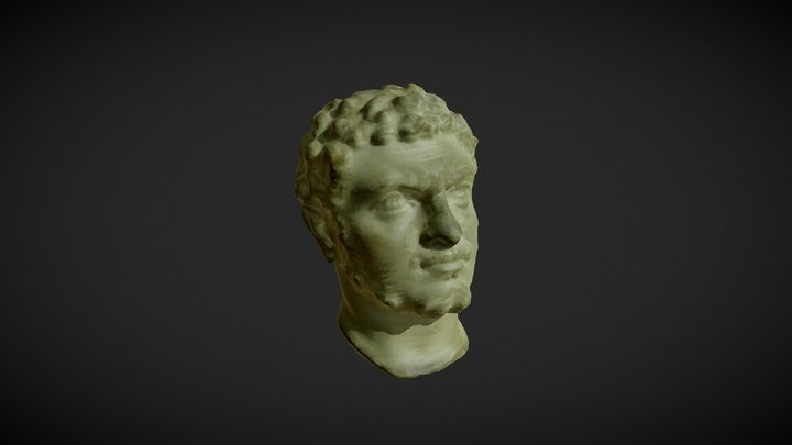 HEAD OF CARACALLA 3D Model