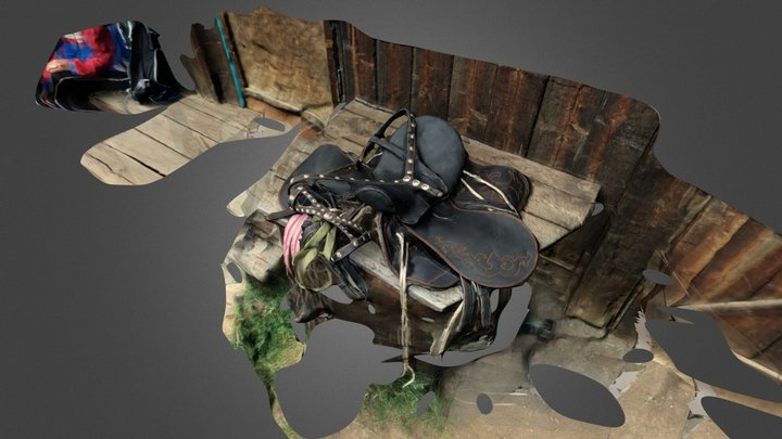 Altai Saddle 3D Model