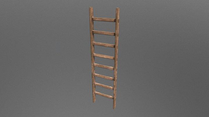 Ladder Try 3D Model