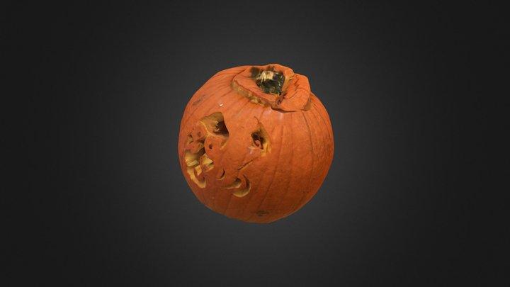Pumpkin 14 3D Model