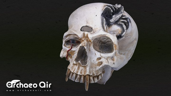 Ghost Train Skull - Totenkopf - 3D Scan Model 3D Model