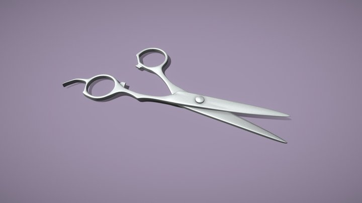 Salon Clippers 3D Model