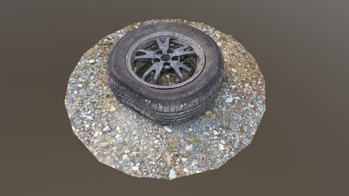 Punctured Car Tire 3D Model