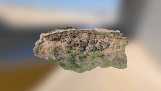 Pillow basalts, Columbia Plateau, Washington 3D Model