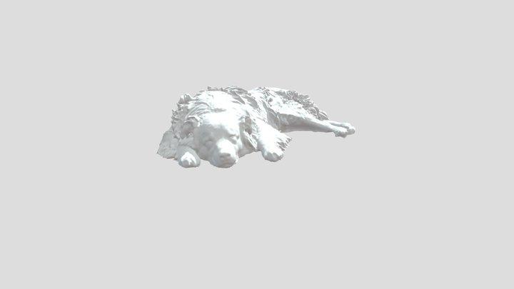 "Australian Shepherd Dog ""Diego"" by Revopoint POP 3D Model"