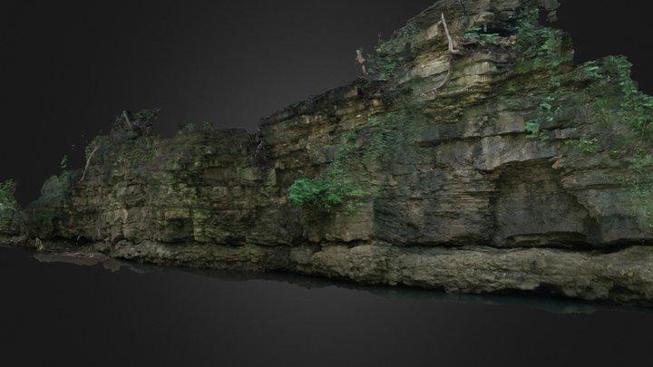 Franklin Creek Outcrop 4 3D Model