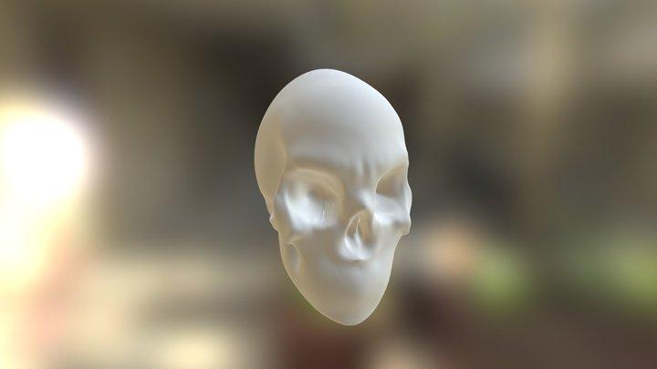 crânio estudo 3D Model