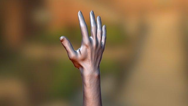 Hand 3d scan 3D Model