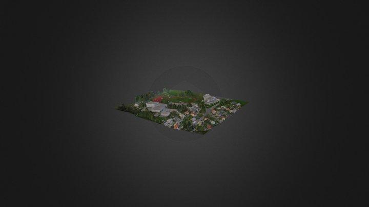 Radovljica 3D Model