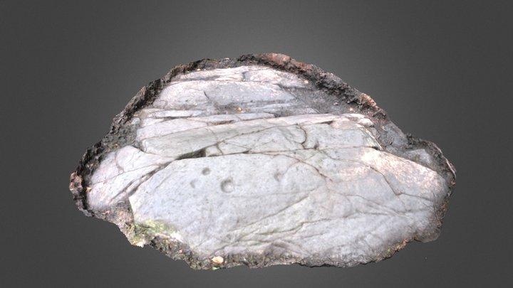 Whitehill 4 3D Model