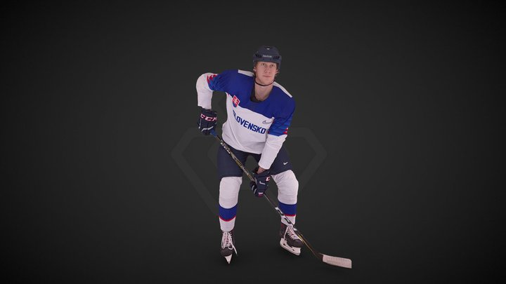 Slovak National Hockey Olympic Jersey 3D Model
