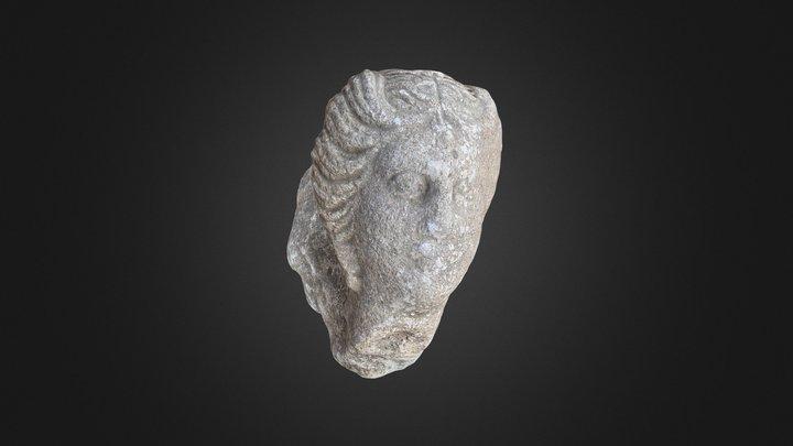 Cap Feminin dintr-un altorelief votiv - TIBISCUM 3D Model