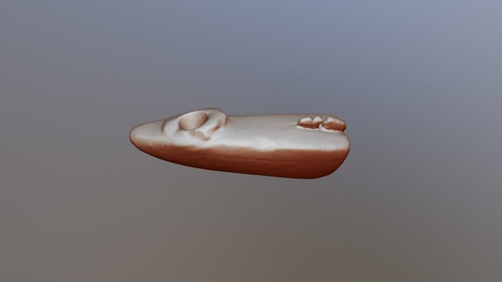 Catlinite Pipe 3D Model