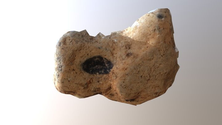 Neolithic sherd with impression of emmer-wheat 3D Model
