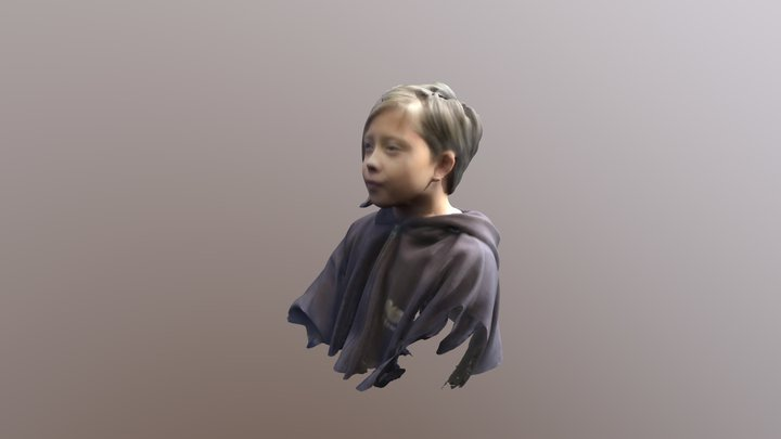Irmaold 3D Model
