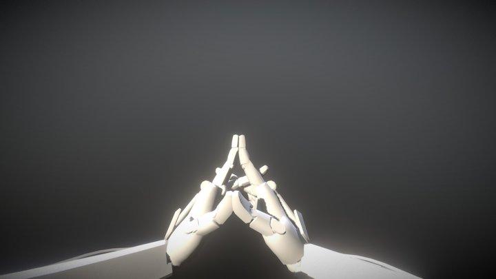 Zanyatta_motion_practice 3D Model