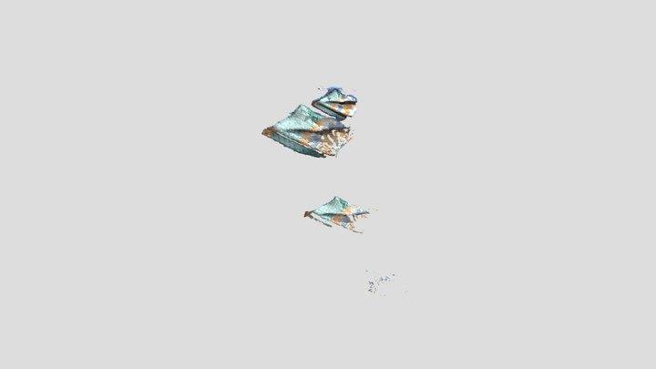 Shonibare OBJ 3D Model