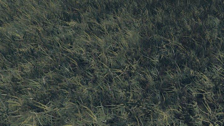 Realtime Grass 3D Model
