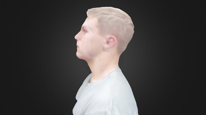 mj 3D Model
