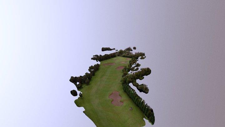 Hole 13 Killerig Golf Course 3D Model